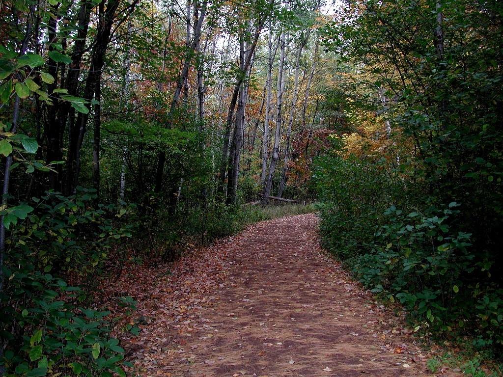 schmeeckle-trail