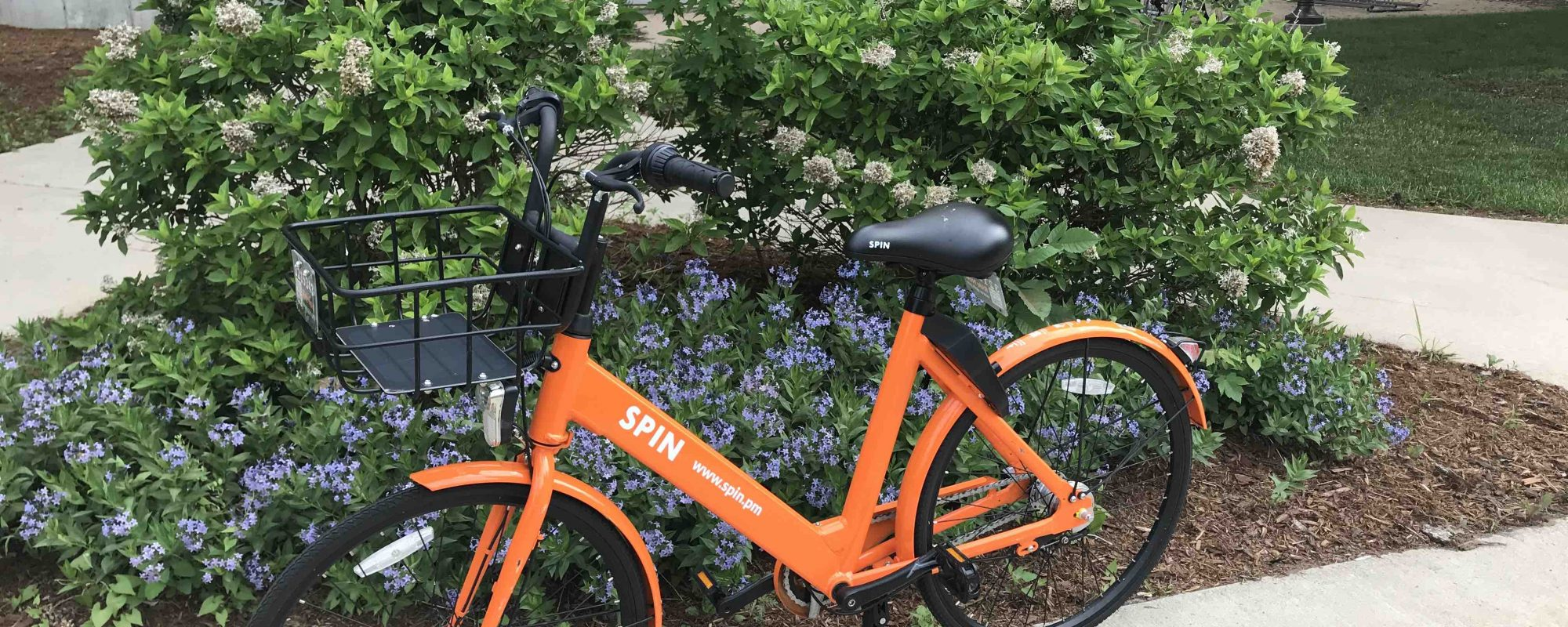 Take Spin bikes for a spin! Nicole Kivela shares a how-to guide for using UW-Stevens Point's bike share option.